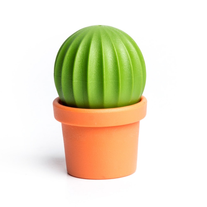 Набор для специй Cactus