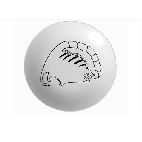 Тарелка Знак зодиака Скорпион 250 ммСервировка<br>Тарелка Скорпион от МАТЕО - это посуда с авторским декором. Такая необычная посуда может быть оригинальным украшением стола, прекрасным вариантом для сервировки и просто потрясающим подарком.<br>